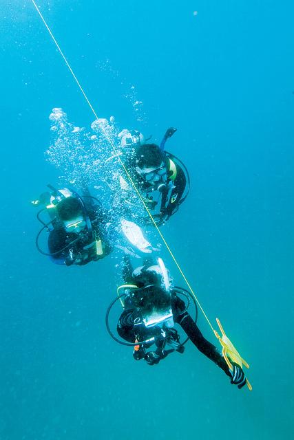 CAY07_1815_UW_DiverOpening