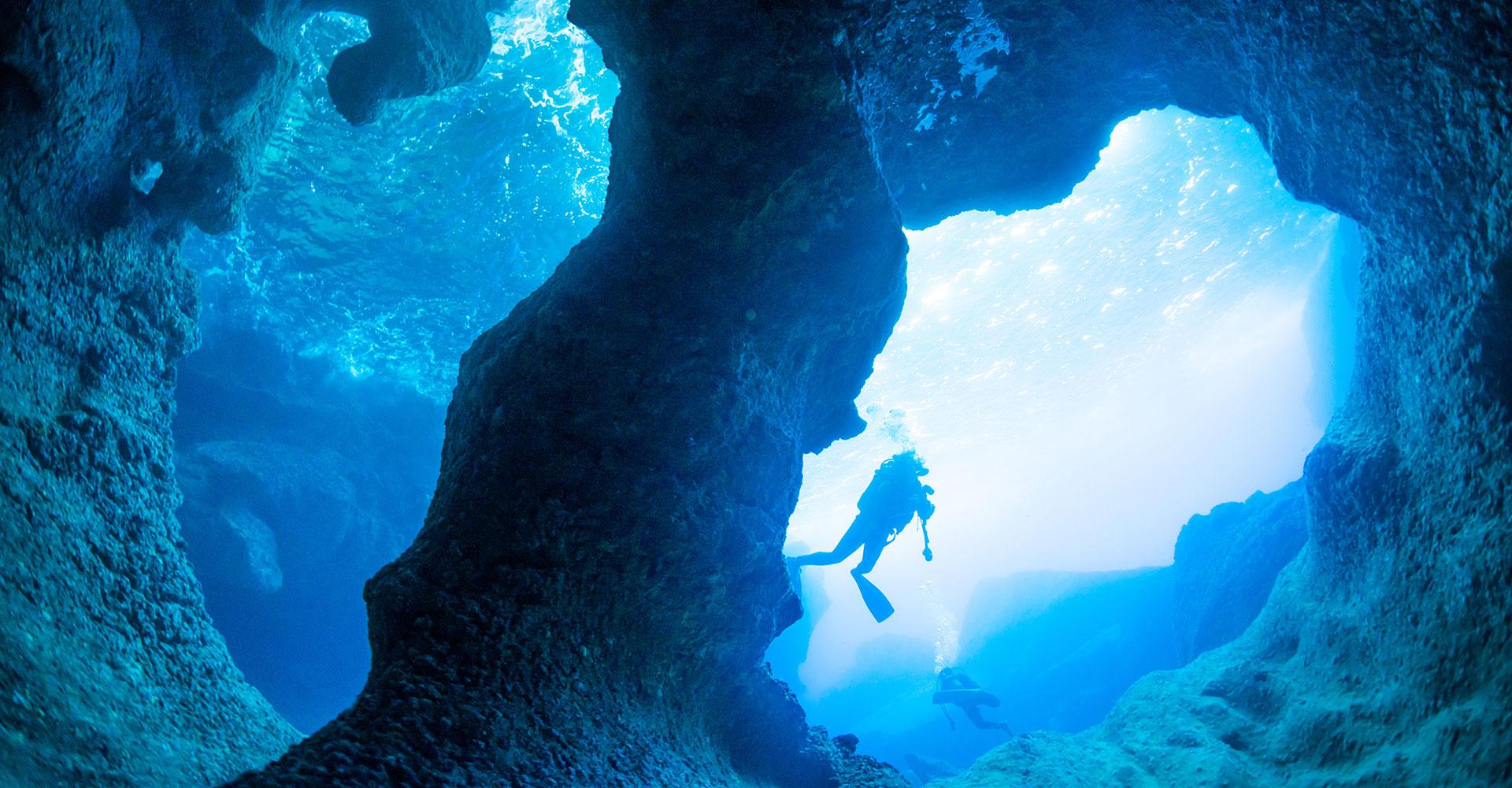 The Dive Sites
